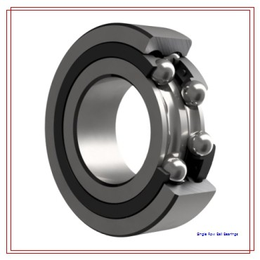 INA 6011-NR Single Row Ball Bearings